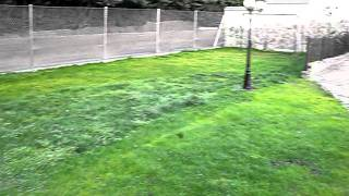 Video del alojamiento Río Alberche - Cortijo de Gredos