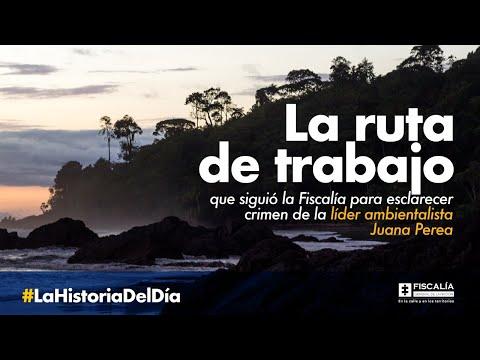 La ruta de trabajo que siguió la Fiscalía para esclarecer crimen de líder ambientalista Juana Perea