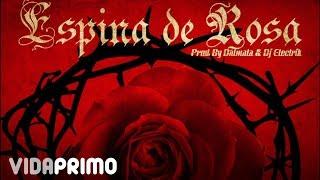 Andy Rivera - Espina de Rosa ft. Dalmata [Official Audio] ®