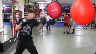 Сочинские боксеры привезли с Первенства ЮФО 8 медалей Новости Эфкате Сочи