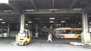 駅からハイキング・りんかい線東京テレポート駅[其の二]