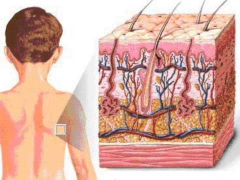 การกำจัดคราบ pigmentary และไฝ