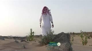 تحميل اغاني البارحه ساهر والنوم ما جاني كلمات محمد الدرناح اداء وليد الشهري MP3