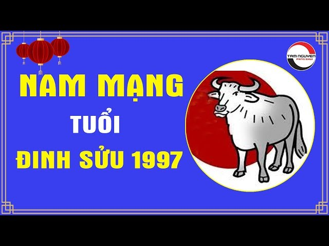 TỬ VI 2020 | Tuổi Đinh Sửu 1997 Nam Mạng | Dự Đoán Tương Lai, Vận Mệnh, Cuộc Đời Của Bạn