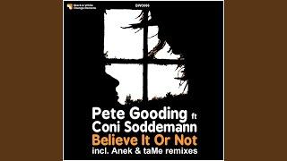 Believe It or Not (Anek Remix) (feat. Coni Soddemann)