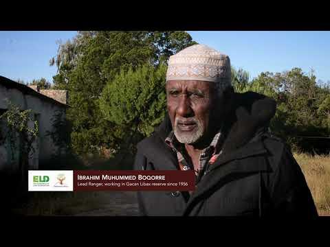 Land Degradation in Somaliland