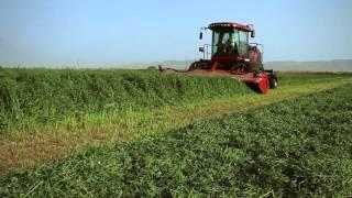 Case IH Equipment For Livestock Operations