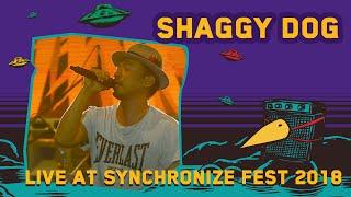 Shaggy Dog Live At SynchronizeFest 7 Oktober 2018