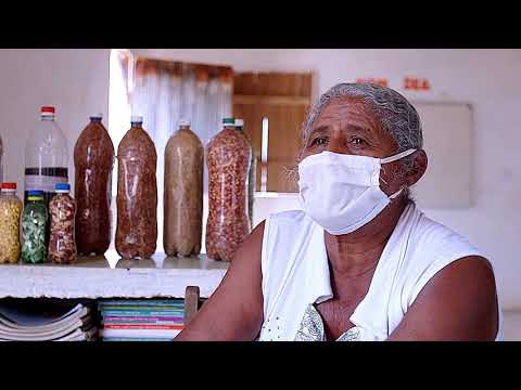 O CICLO AGROECOLÓGICO: agricultura familiar de base agroecológica no Semiárido cearense