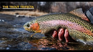 FLY FISHING Colorado The Trout Trifecta