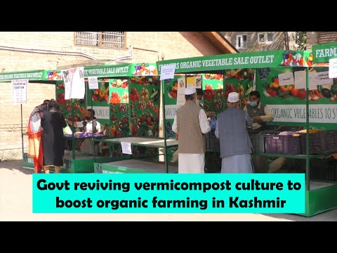 Govt reviving vermicompost culture to boost organic farming in Kashmir