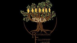 Vineyards & Rest - Leviticus 25-26 Sabbath Message