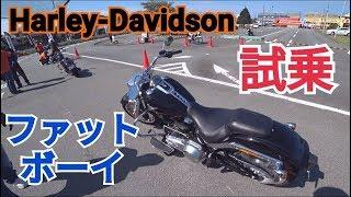 ハーレーダビッドソン、ファットボーイの試乗インプレッション動画。Harley-Davidson FAT BOY Test Drive 2019 MODEL  ハスフォー#123