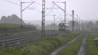 preview picture of video 'agilis zwischen Radldorf und Straubing'