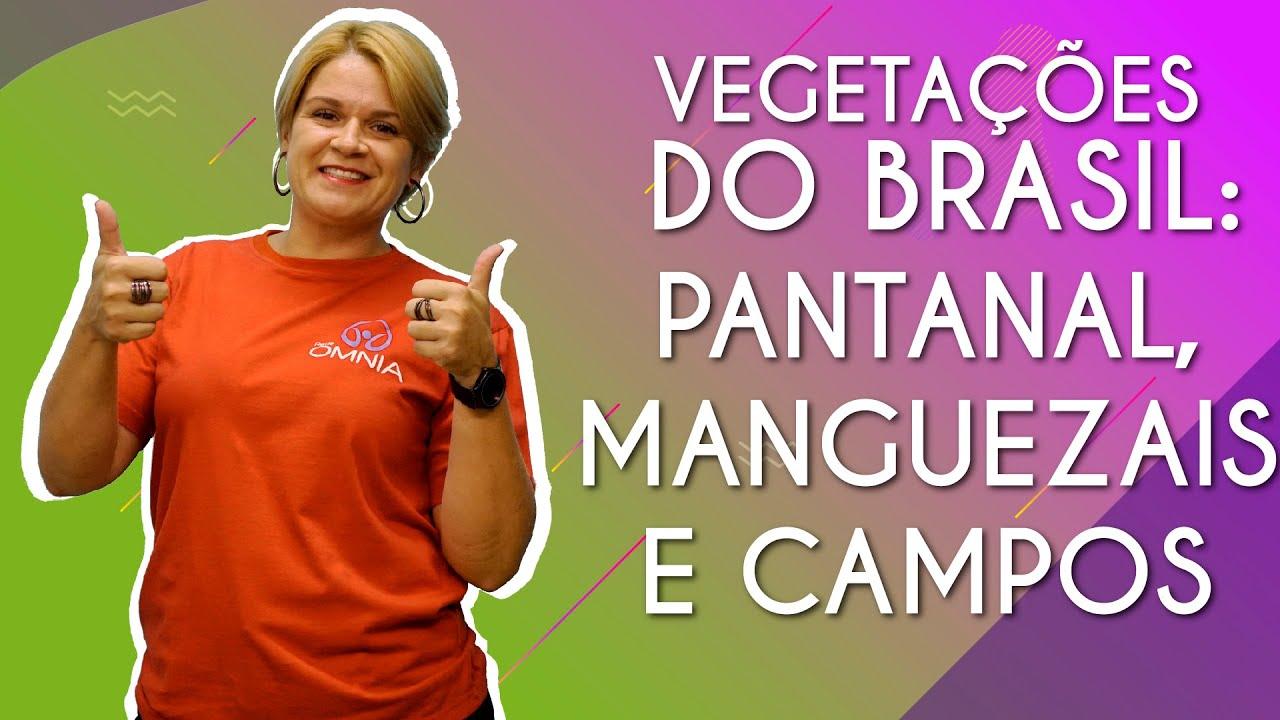 Vegetações do Brasil: Pantanal, Manguezais e Campos