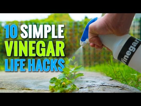 Remove Mineral Buildup From A Tap With A Vinegar-Soaked Cotton Ball
