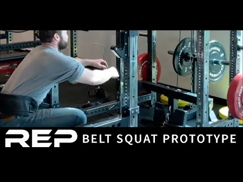 Cable Belt Half Squat