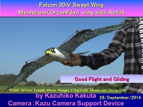 Falcon 30iV Swept wing with Airfoil: Good Flight and Gliding