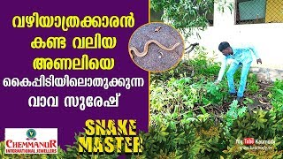 Vava Suresh catches a large viper seen by a pedestrian | Snakemaster | EP 372