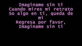 Luis Fonsi -Imaginame Sin Ti with lyrics
