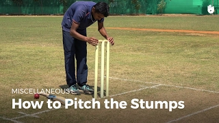 How To Pitch The Stumps | Cricket
