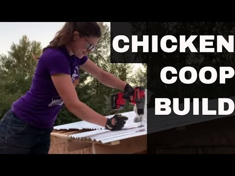Chicken Coop Build: Back to Eden Gardening