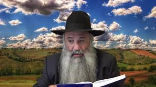 N°236 Nos maîtres nous font vivre la vérité dans toutes les générations