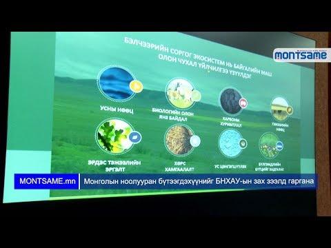 Монгол ноолууран бүтээгдэхүүнийг БНХАУ-ын зах зээлд гаргана