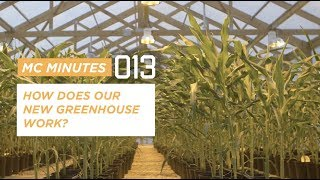 HOW DOES A GREENHOUSE WORK?   MC MINUTES 13