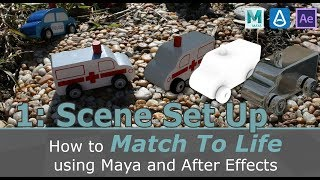 Video Series: Match to Life