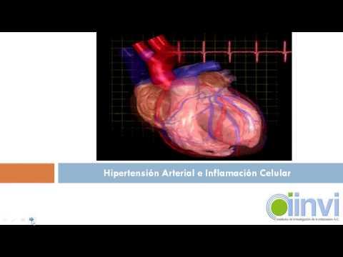Medicamentos para la hipertensión valz