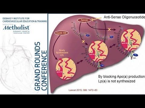 Hipertenzija ir karnitinas