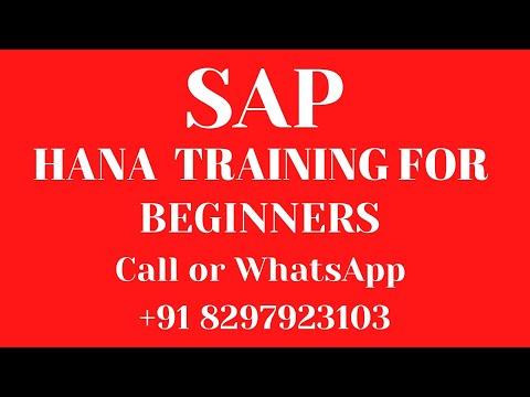 SAP HANA Training Videos 1 for beginners ( What is SAP HANA ? ) +91 7702843287