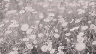 Kelsea Ballerini Love Me Like A Girl (Ballerini Album Version)