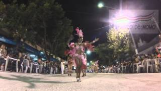 preview picture of video 'Carnaval 2015 FANTASÍA'