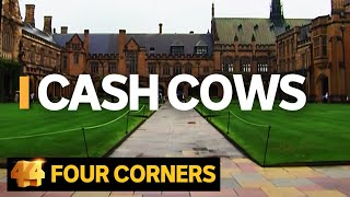Cash Cows: Australian universities making billions out of international students | Four Corners
