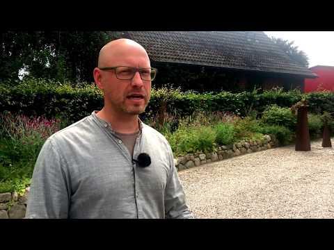 Gartenplanung: Kies statt Pflaster?