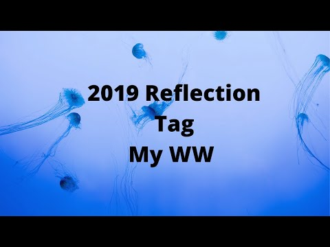 2019 Reflection Tag// MY WW Blue Weight Loss Journey Vlog