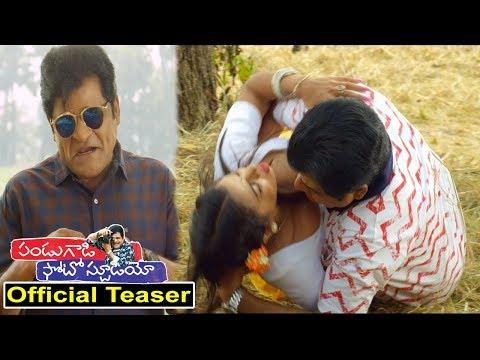 Pandugadi Photo Studio Official Teaser Latest Telugu Movie Trailer   Comedian Ali