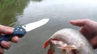 Форум владимирского рыболовного клуба