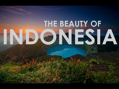 5 reasons to contact us to organize your tailor made holidays in Indonesia