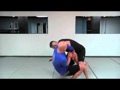 MMA & the Kimura Part 1 (diary entry)