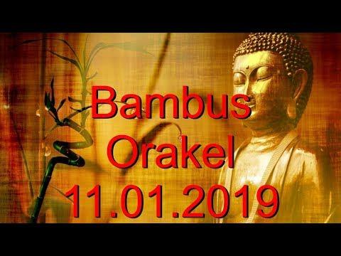 Bambus Orakel: 11.01.2019 (Freitag)