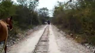 preview picture of video 'Cuzama cenote tour near Merida, Mexico'