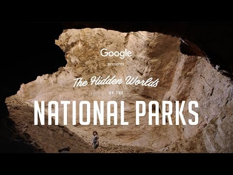 جوجل: زيارة المتنزهات الوطنية الأمريكية بواسطة الواقع الافتراضي