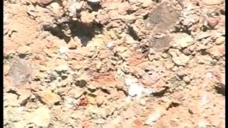 Камни вопиют.  Катастрофизм в геологии Крыма.