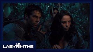 """Extrait : """"Attaque nocturne"""""""