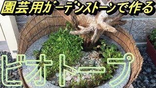【めだかのビオトープ】園芸用ガーデンストーンで作ったビオトープを掃除しました Biotope Aquarium Setup.