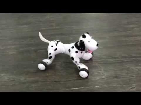 Zoomer The Interactive Robotic Dog Review. Smart dog