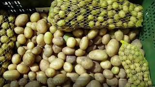 Potato Gene Bank (Video made at PLAID Workshop in Croatia)